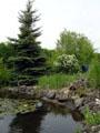 Blick auf den Gartenteich in Richtung Westen
